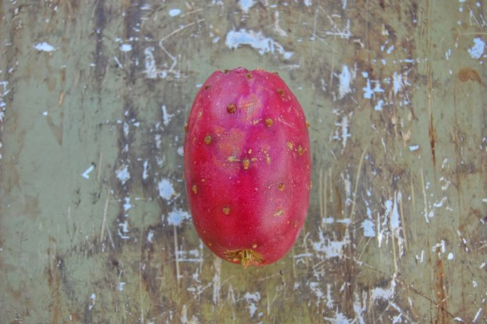 Red prickly Pear Cactus Fruit