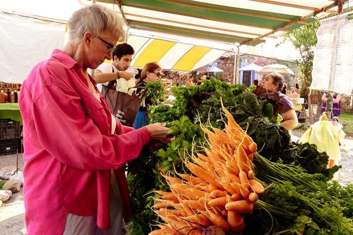 Shopping at the Organic Market, san Miguel de Allende