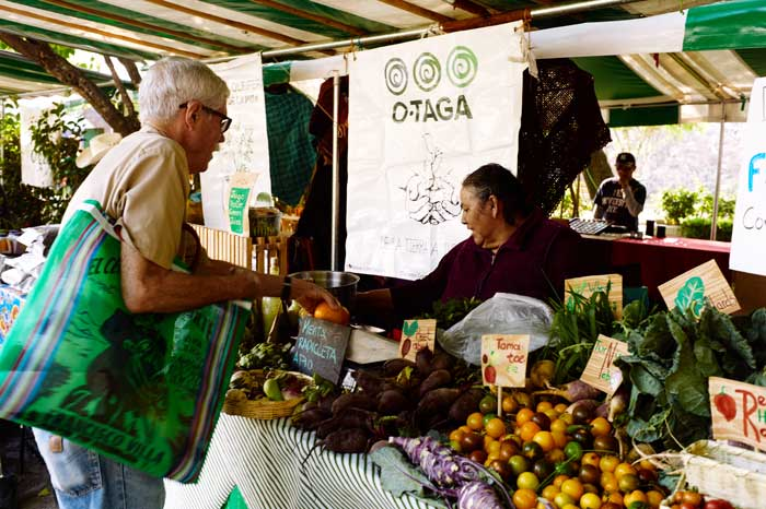 Produce Stand at the Organic Market