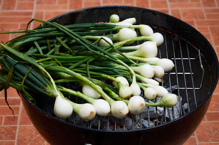 Spring Onions on the Grill