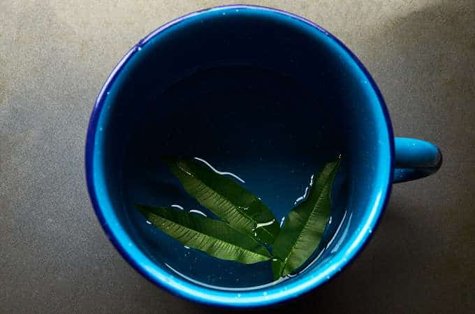 Making Lemon Verbena Tea
