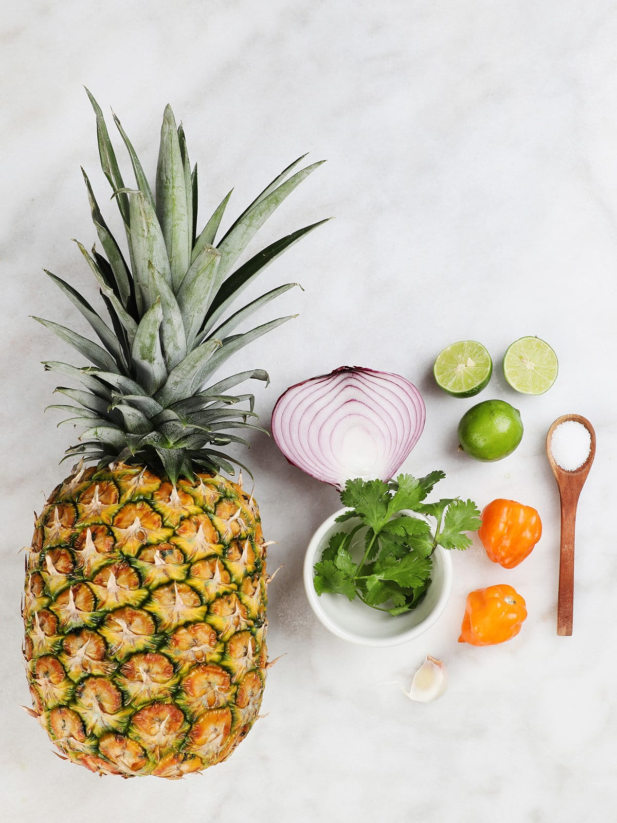 Pineapple Habanero Salsa Ingredients