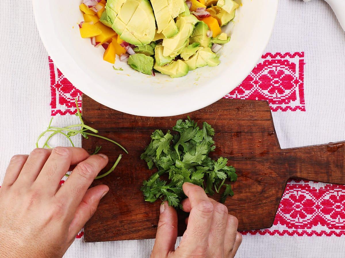 Cilantro Leaves with Mango Salsa